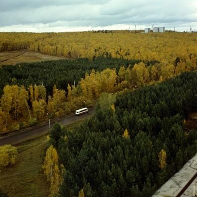 Окрестности Академгородка осенью
